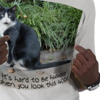 It's hard to be humble... T-shirt