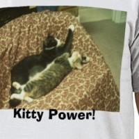 kitties, Kitty Power! T-shirt