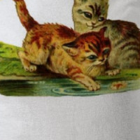 Pond Kittens T-Shirt T-shirt